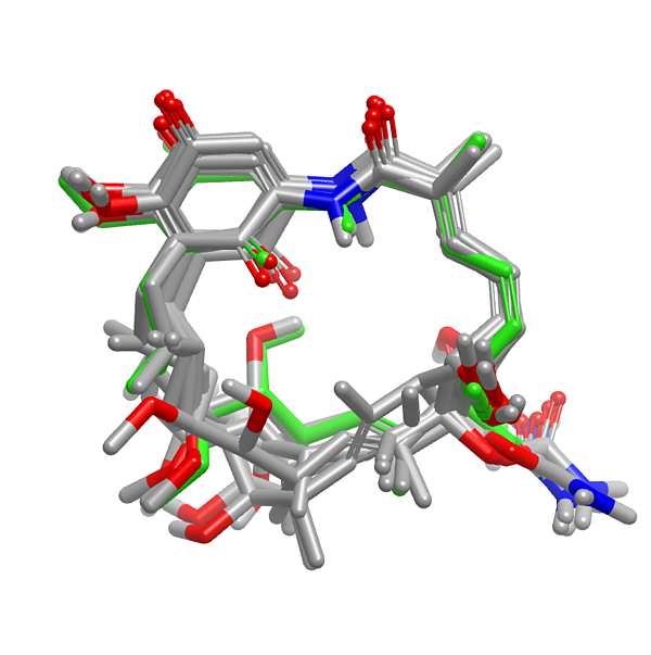 geldanamycin_macrocycle