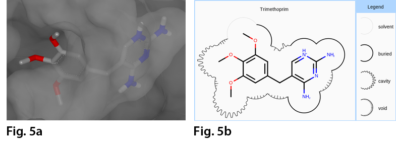 Example of the 2w3a complex (a) in VIDA (b) the 2D depiction of the complex where the molecule surface is annotated based on the distance between the accessible surfaces of the ligand and the surrounding protein.