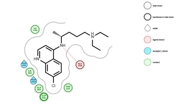 Grapheme: Advancing Protein-Ligand Visualization